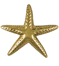Large Polished Brass Starfish Door Knocker, Michael Healy MH1061