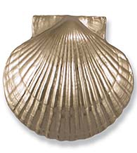 Nickel Silver Sea Scallop Door Knocker, Michael Healy MH1073