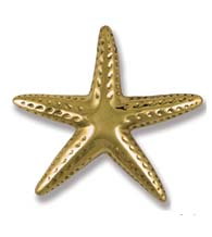 4-3/4 Inch Polished Brass Starfish Door Knocker, Michael Healy MHS141