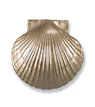 Bay Scallop Door Knocker in Silver Nickel, Michael Healy MHS32
